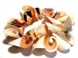 Armband Muscheltrompeten