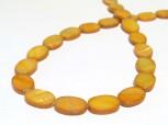 Strang Muschel oval gold 11 x 16 mm